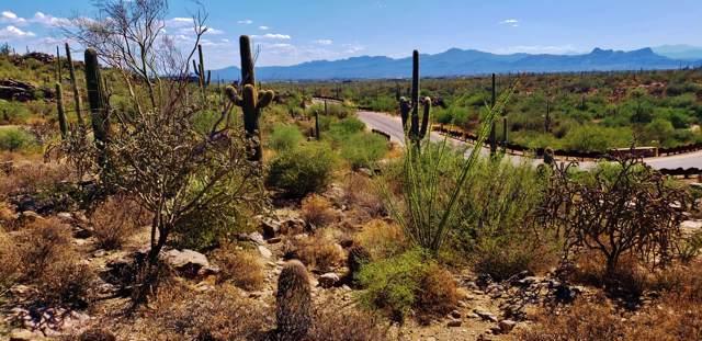 4176 W Horizon Ridge Drive #241, Marana, AZ 85658 (#21924904) :: Long Realty - The Vallee Gold Team