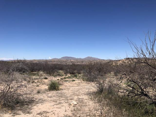 977 W Appaloosa Lane, Benson, AZ 85602 (MLS #21925813) :: The Property Partners at eXp Realty