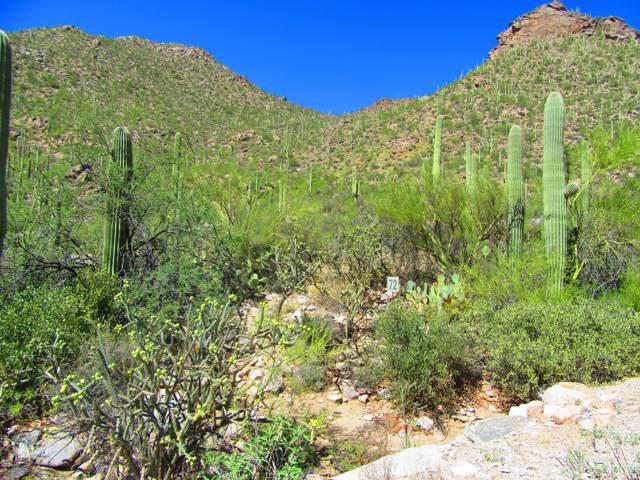 4550 W Cush Canyon Loop Lot 72, Marana, AZ 85658 (#21925976) :: Luxury Group - Realty Executives Tucson Elite