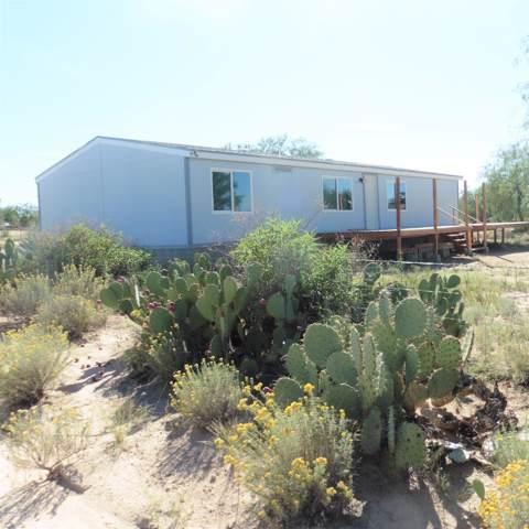 14421 W Viking Street, Tucson, AZ 85736 (#21926100) :: Long Realty Company