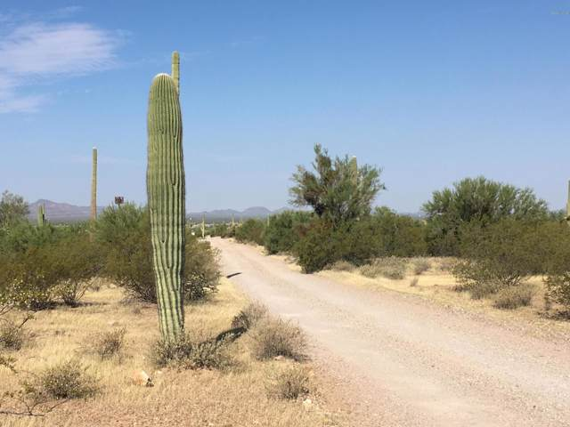 1650 N Sandario Road, Tucson, AZ 85743 (#21926326) :: Realty Executives Tucson Elite