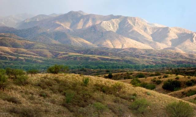 45 Patagonia Hills Drive 3B-2, Patagonia, AZ 85624 (MLS #21926752) :: The Property Partners at eXp Realty