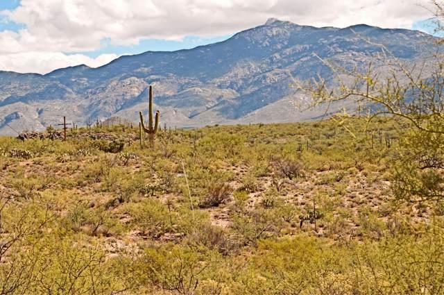 15630 E Rincon Creek Ranch Road, Tucson, AZ 85747 (#21926785) :: The Josh Berkley Team