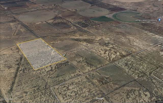 80 acres W Webb Road, Elfrida, AZ 85610 (#21926788) :: The Local Real Estate Group | Realty Executives