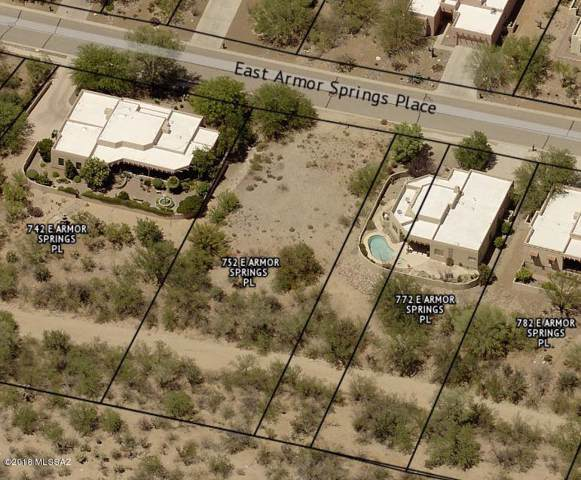 752 E Armor Springs Place #60, Green Valley, AZ 85614 (#21926886) :: Long Realty - The Vallee Gold Team