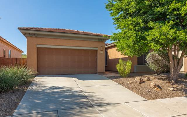 8713 N Shadow Wash Way, Tucson, AZ 85743 (#21926905) :: Long Realty - The Vallee Gold Team
