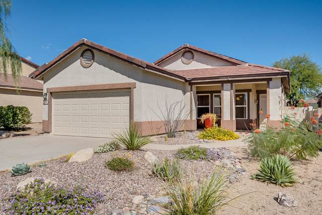 728 W Buffalo Grass Drive, Oro Valley, AZ 85755 (#21926922) :: eXp Realty