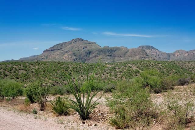 TBD Alegria Rd E, Tubac, AZ 85646 (#21926923) :: Gateway Partners | Realty Executives Tucson Elite