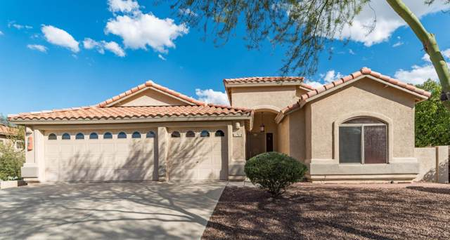 11314 N Cactus Rose Drive, Oro Valley, AZ 85737 (#21926950) :: eXp Realty