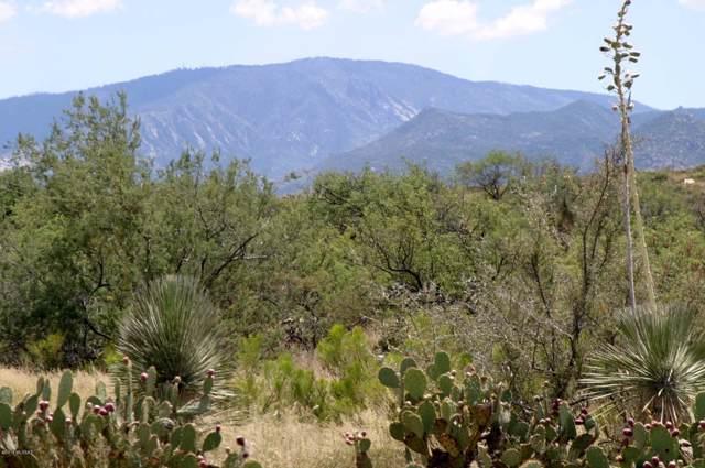 W Linda Vista Road, Oracle, AZ 85623 (#21927101) :: The Local Real Estate Group | Realty Executives