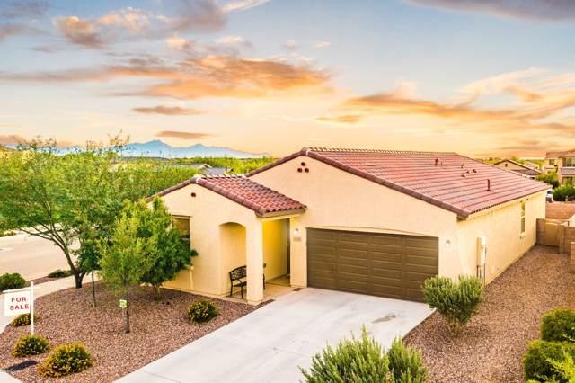 6698 E Via Boca Grande, Tucson, AZ 85756 (#21927172) :: Long Realty - The Vallee Gold Team