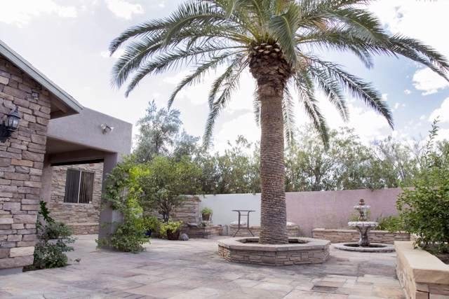 5646 E 21st Street, Tucson, AZ 85711 (#21927202) :: Long Realty - The Vallee Gold Team
