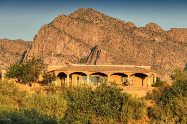 10835 N Summer Moon Place, Oro Valley, AZ 85737 (#21927287) :: Long Realty Company