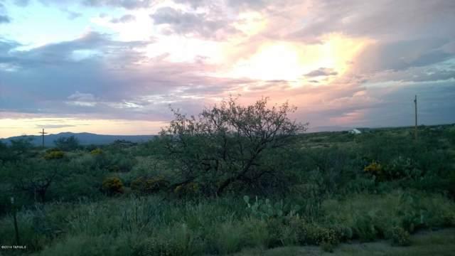W Linda Vista Road #0, Oracle, AZ 85623 (#21927401) :: Realty Executives Tucson Elite