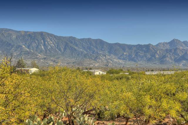 4128 E Pinal Street, Tucson, AZ 85739 (#21927451) :: Realty Executives Tucson Elite