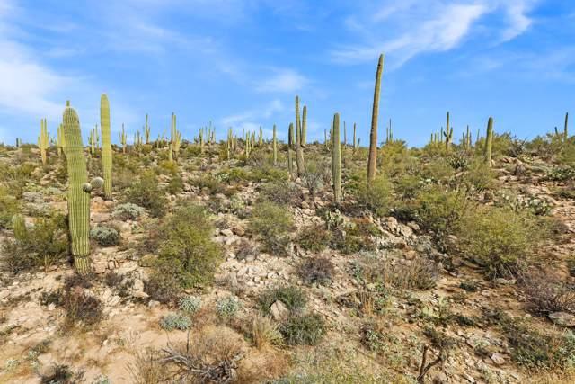 1813 Tortolita Mountain Circle #499, Oro Valley, AZ 85755 (#21927458) :: Realty Executives Tucson Elite