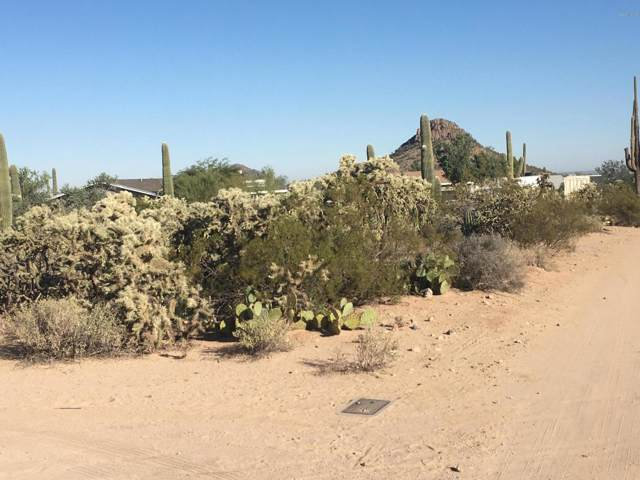 6101 N Bobcat Lane, Tucson, AZ 85743 (#21927537) :: Long Realty - The Vallee Gold Team