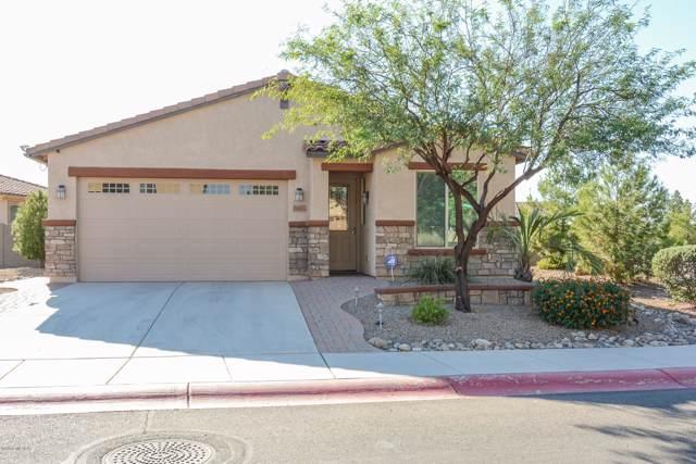 8647 N Western Juniper Terrace, Tucson, AZ 85743 (#21927682) :: Long Realty - The Vallee Gold Team