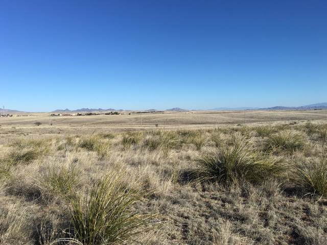 10 Ranch Oasis Road #10, Sonoita, AZ 85637 (#21927895) :: Long Realty - The Vallee Gold Team