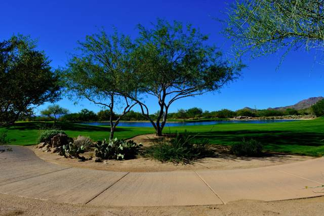 14431 Giant Saguaro Place #31, Oro Valley, AZ 85755 (#21927924) :: Long Realty - The Vallee Gold Team