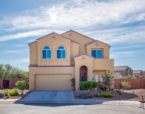 12219 W Fianchetto Drive, Marana, AZ 85653 (#21927936) :: Long Realty - The Vallee Gold Team