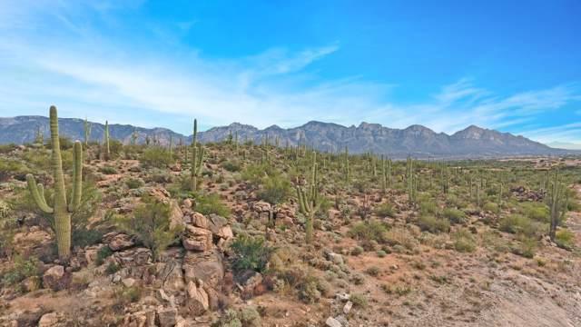 1795 Tortolita Mountain Circle #501, Oro Valley, AZ 85755 (#21927950) :: Long Realty Company
