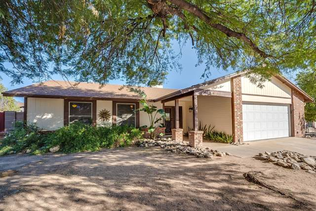 6250 N Celery Place, Tucson, AZ 85741 (#21928016) :: Long Realty - The Vallee Gold Team