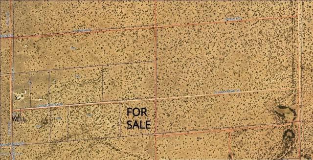 21981 W Black Peak Trail #0, Tucson, AZ 85735 (#21928083) :: Long Realty - The Vallee Gold Team