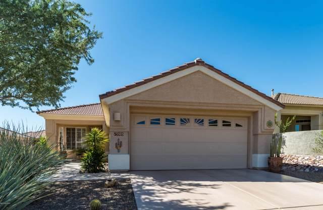13505 N Holly Grape Drive, Marana, AZ 85658 (#21928215) :: Long Realty - The Vallee Gold Team