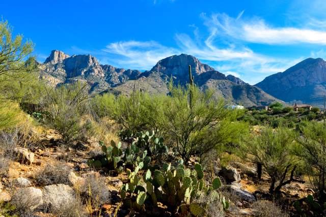 10635 N Del Sole Court N #76, Tucson, AZ 85737 (#21928299) :: Kino Abrams brokered by Tierra Antigua Realty