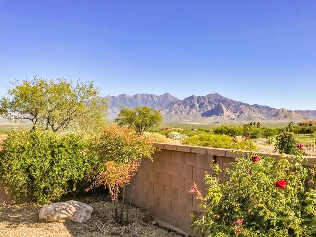 5513 S Pinkley Peak Drive, Green Valley, AZ 85622 (#21928327) :: Gateway Partners | Realty Executives Tucson Elite
