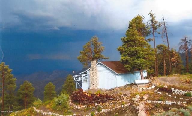 12825 Upper Loma Linda Road N, Mt. Lemmon, AZ 85619 (#21928332) :: Long Realty - The Vallee Gold Team