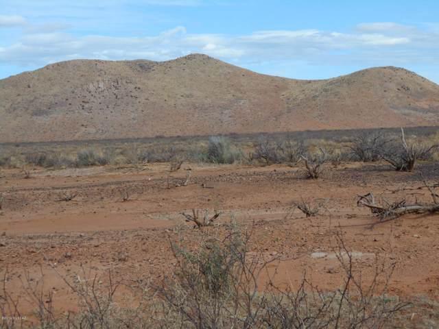 Tbd Highway 191, Pearce, AZ 85625 (#21928346) :: The Josh Berkley Team