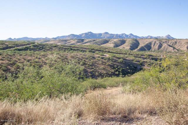 1363 Via Patricia #63, Rio Rico, AZ 85648 (#21928388) :: Long Realty - The Vallee Gold Team