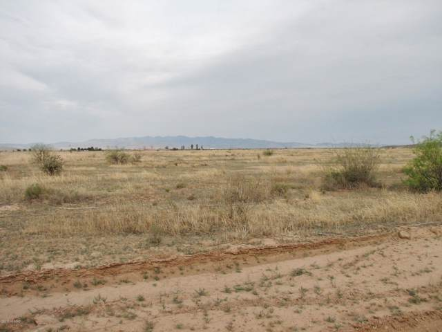 30.7 Acres E Sulphur Springs Road Lot 4, Willcox, AZ 85643 (#21928674) :: Long Realty - The Vallee Gold Team