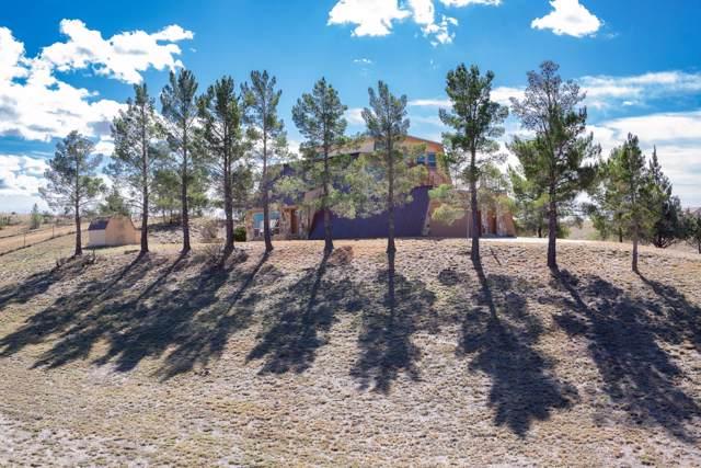 17 Buckskin Lane, Sonoita, AZ 85637 (#21928682) :: Long Realty - The Vallee Gold Team