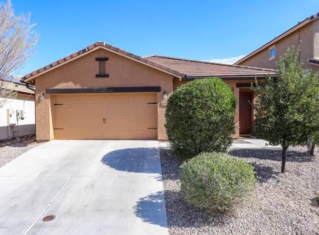 6695 S May Fly Drive, Tucson, AZ 85757 (#21928787) :: Long Realty - The Vallee Gold Team