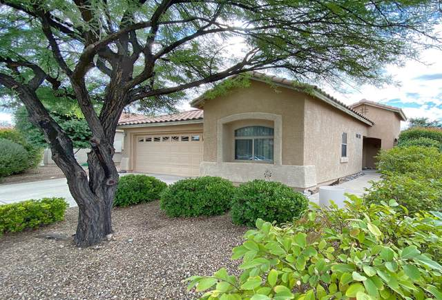 10508 E Carolina Willow Lane, Tucson, AZ 85747 (#21928923) :: Long Realty - The Vallee Gold Team