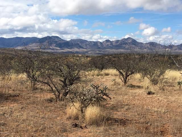 430 Camino Kennedy #121, Tubac, AZ 85646 (#21928941) :: Long Realty Company