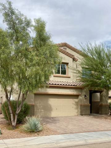 8764 W Atlow Road, Marana, AZ 85653 (#21929022) :: Long Realty - The Vallee Gold Team
