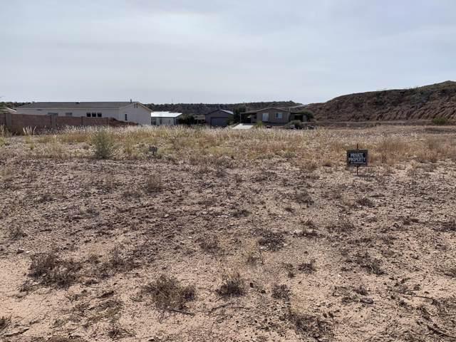 693 W Pony Express Lane, Benson, AZ 85602 (#21929052) :: The Josh Berkley Team