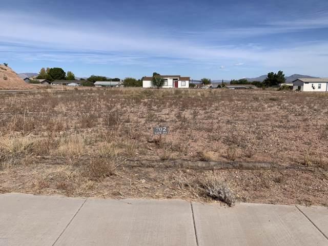 702 W Coachline Lane, Benson, AZ 85602 (#21929056) :: The Josh Berkley Team