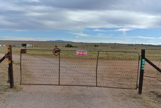 3499 Highway 82, Sonoita, AZ 85637 (#21929061) :: Long Realty - The Vallee Gold Team