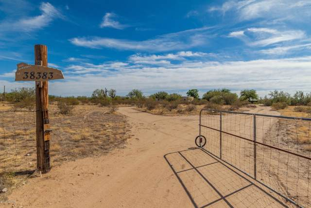 38383 S Bluebell Road, Marana, AZ 85658 (#21929078) :: Long Realty - The Vallee Gold Team