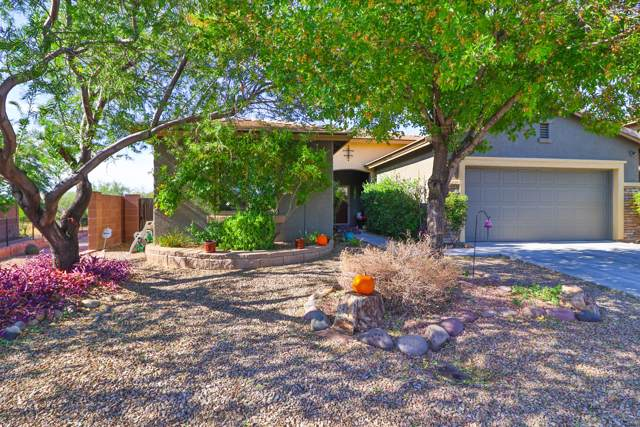 7392 E Sycamore Park Boulevard, Tucson, AZ 85756 (#21929179) :: Long Realty - The Vallee Gold Team