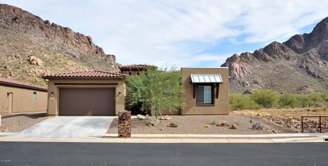 3031 S Smokin Pistol Way, Tucson, AZ 85713 (#21929277) :: Long Realty - The Vallee Gold Team