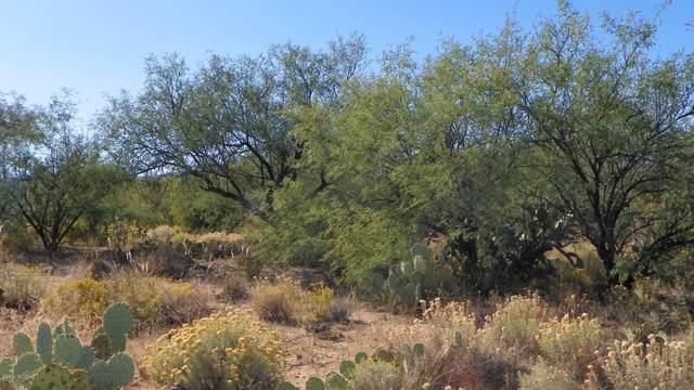 16855 S Horse Hollow Trail #4, Sahuarita, AZ 85629 (#21929279) :: Long Realty Company
