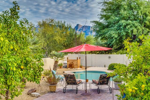 13078 N Pioneer Way, Oro Valley, AZ 85755 (#21929295) :: Long Realty - The Vallee Gold Team