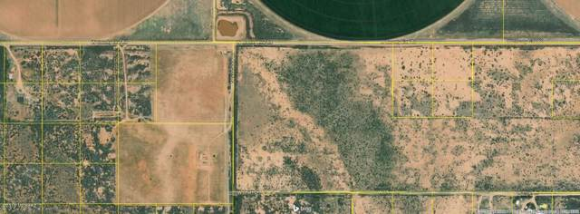 TBD County Line, Willcox, AZ 85643 (#21929333) :: Long Realty - The Vallee Gold Team