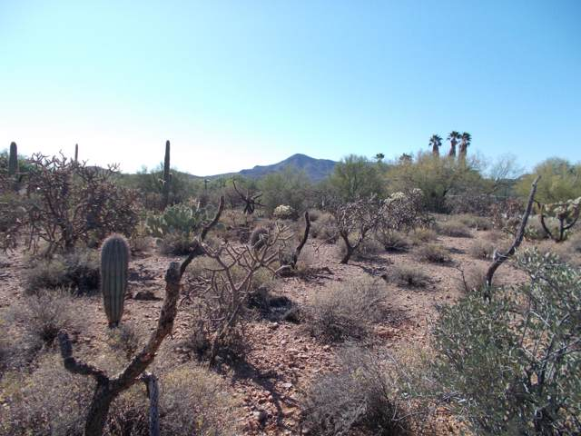 N Ironwood Crest Drive, Tucson, AZ 85745 (#21929375) :: The Josh Berkley Team